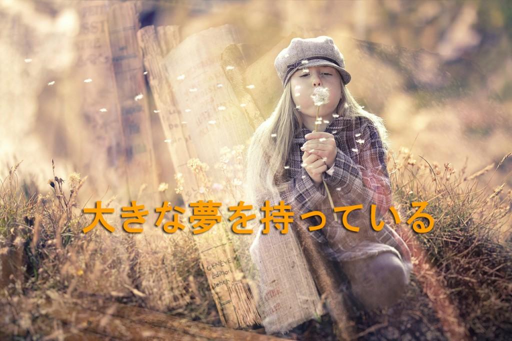 fantasy-579810_12801