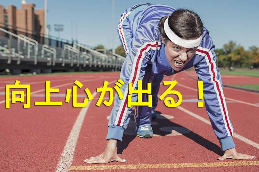 running-498257_12801